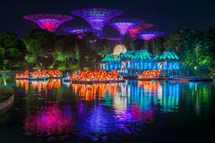 Mid-Autumn Festival (BP Chua) Tags: midautumn festival chinese lantern colours gardensbythebay singapore travel river water reflection supertrees gbtb nikon lights installation d800e night tradition