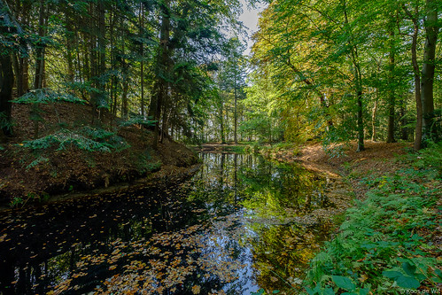 Autumn at Estate Fraeylemaborg