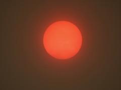 Ophelia's sun! (rockwolf) Tags: sun soleil stormophelia weatherphenomenon sand saharasand redsun surreal weather uptonmagna shropshire rockwolf