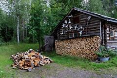 Old swedish log cabin (Burminordlicht) Tags: logcabin sverige sweden schweden blockhaus blockhütte trehus wooden woodenhouse nordichouse nordisch nordisk