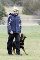 TB0A4703 (templeinmn) Tags: 2017 fall ipo mvsv schutzhund trial