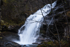 DSC_0088 (Maryna Beliauskaya) Tags: waterfall water norway forest tree nature travelphoto travel exploremore exploreusa