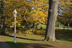 Spa autumn
