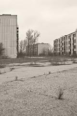 _MG_8273 (daniel.p.dezso) Tags: kiskunlacháza kiskunlacházi elhagyatott orosz szoviet laktanya abandoned russian soviet barrack urbex ruin military base militarybase