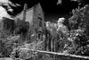 Str8 Outta Compton (Christian Hacker) Tags: compton castle manor house blackandwhite bw mono monochrome monochromatic canon eos50d clouds white sunny architecture nationaltrust england uk infrared devon chimney wall walledgarden formal window stone building old historic grade 1 listed medieval magnolia shrubs lichen front entrance dark black