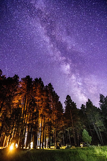 Camping under the (200 billion) stars