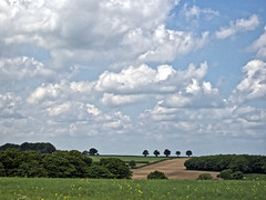The Lincolnshire Wolds,Welton Le Wold near Louth,June 3rd 2008. (avocet1989) Tags: lincolnshire wolds lincolnshirewolds weltonlewold louth countryside