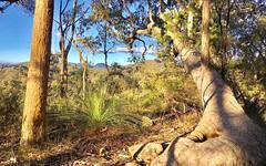 Lot 2 Murrays Run Road, Laguna NSW