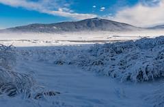 Cerknica Lake (happy.apple) Tags: otok cerknica slovenia si cerkniškojezero cerknicalake slovenija landscape intermittentlake presihajočejezero winter snow zima sneg slivnica morning jutro geotagged