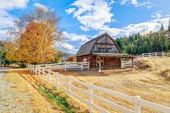 Day 284: A Canadian Barn