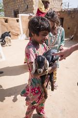 Rajasthan - Jaisalmer - Desert Safari traditional villiage