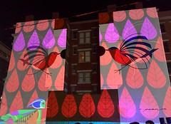 BLINK CINCINNATI 2017 (gobucks2) Tags: blink art ohio cincinnatiohio cities fall2017 october2017 2017 birds