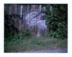 Ravens (m.ashe7) Tags: