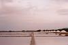 Dunaliella salina (f_skij) Tags: saline trapani sicily pink sea minimalist landscape minimal centralperspective perspective film 35mm olympusom2 kodak ultramax400 400asa softness