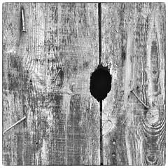"""Three nails and one hole (Jerzy Durczak (a.k.a."""" jurek d."""")) Tags: wood nail hole"""