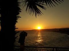 (nissmag) Tags: sky seascape waterscape sea nice côtedazur frenchriviera ciel coucherdesoleil paysage mer palmier sunset lumière
