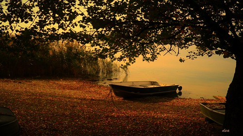 the little boat in the fall