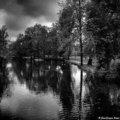 0576 - Lac Daumesnil, Paris, 1974 (ikaune) Tags: nb bw noiretblanc blackandwhite ikaune argentic argentique monochrome paris vincennes lacdaumesnil cygnes rolleiflex