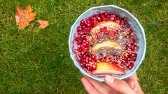 Pomegranate and apple with chia and flax seed in a protein/acai mix (marcoverch) Tags: essen healthy closeup lebensmittel natural ernährung kochen fresh food foodporn organic köln nordrheinwestfalen deutschland de leaf blatt gesund fruit frucht fall fallen nahansicht noperson keineperson garden garten nature natur summer sommer sweet süs color farbe desktop bowl schüssel health gesundheit refreshment erfrischung diet diät delicious köstlich wood holz tasty lecker pomegranate chia flax seed protein acai mix apple spiral fuji lego españa berlin nikkor duck boats cathedral scotland