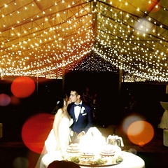 """Wedding Fairy lights • <a style=""""font-size:0.8em;"""" href=""""http://www.flickr.com/photos/98039861@N02/37773201231/"""" target=""""_blank"""">View on Flickr</a>"""