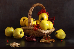 A Sign Of The Golden Key (panga_ua) Tags: asignofthegoldenkey golden autumn october fall quinces viburnumberries red fruit basket wicker arrangement art artandcraftproduct composition horizontal indoors nopeople stilllife photography table colorimage foodanddrink dark freshness ukraine variation woodmaterial quince witheredleaves