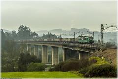 Vacío de carbón en Serín (440_502) Tags: 601 bitrac caf fesur comsa rail transport carbón carbonero ponferrada aboño