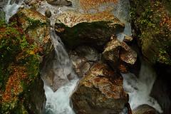 slovenia nature 2017