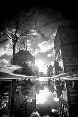 Golden (AlphaAndi) Tags: mono monochrome urban city trier tiefenschärfe wow water wasser puddle pfütze leute personen people menschen menschenbildef fullframe vollvormat dof sony streets streetshots streetshooting strase strasenleben streetlife vollformat