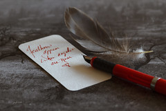 Feathers appear when angels are near.. (~ Paula B) Tags: feather quote calligraphypen redink handwriting sepia