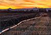 Lead On (James Neeley) Tags: idaho roberts sunrise ruralidaho tetons sprinklerline jamesneeley best2017