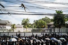 * (Sakulchai Sikitikul) Tags: street snap streetphotography songkhla sony a7s thailand monkey 28mm voigtlander umbrella jumping