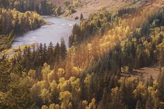 Snake River (shishirmishra1) Tags: fall outdoor national park river scenic explore travel
