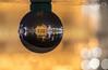 Golden Temple (Yogendra174) Tags: amritsar goldentemple incredableindia crysyalball glassball refraction invertedimage