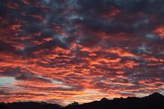 Sonnenaufgang - Sunrise in den Berner Alpen - Alps bei Spiez im Berner Oberland im Kanton Bern der Schweiz (chrchr_75) Tags: christoph hurni schweiz suisse switzerland svizzera suissa swiss chrchr chrchr75 chrigu chriguhurni chriguhurnibluemailch november2017 november 2017 albumzzz201711november sonnenaufgang sonnenaufgänge albumsonnenaufganginderschweiz zonsopgang lever du soleil sunrise albumschreckhorn schreckhorn alpen alps viertausender berg montagne montagna mountain kantonbern berner oberland wolke cloud wolken himmel himmu natur nautre sky wetter weather albumwolkenüberderschweiz lbumschreckhorn