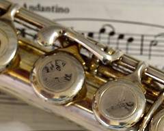 Andantino - Flute - Macro Mondays (Jean-Marc Vacher) Tags: flute memberschoicemusicalinstruments macromondays reflection gclef musicalinstrument keys macro andantino