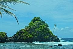 Camel Rock - Samoa (chumlee10) Tags: southpacific samoa island cruise2017 emeraldprincess cruise camel rock ocean surf palm tree