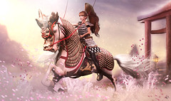 Samurai power (meriluu17) Tags: jinx horse samurai pink pastel petal petals power fight war fantasy magical outdoor pet ride ridding armour gallop drago dragon