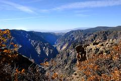 Sunset View (Chuckcars) Tags: montrose colorado usa october autumn harvest moonset sky tree bcnp black canyon national park grnd mesa