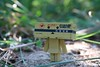 IMG_6599 (ccandyluv357) Tags: danbo danboard toys