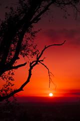 Ramas _XT29323 (Alberto Estella) Tags: nube libre aire minube mirador paisaje tripode color temperatura arbol rojo cielo exposicion larga star árbol planta hierba estella mar azul costa brava torres agua arena sedosa roca nubes formación rocosa puesta sol fujifilm xt2 bosque senda de campo anochecer avión montañarador montaña