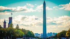 2017.10.28 DC People and Places, Washington, DC USA 9866