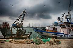 Trapani (robertar.) Tags: pesca reti sicilia trapani porto italia sicily