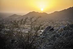 sunset over Phoenix (TAC.Photography) Tags: arid desert scrub phoenix arizona tomclarkphotographycom tacphotography tomclark d7100