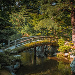 The Garden at Kyoto Imperial Palace thumbnail