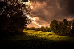 Only Sound is the Wind (Nicholas Erwin) Tags: landscape nature light sunlight sun clouds ominous quiet naturephotography autumn scenic grass trees contrast nikon d610 nikkor 2018g waterburycenter vermont vt unitedstatesofamerica usa october harvest america fav10 fav25 fav50