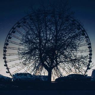 l'arbre dans la roue