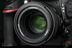 """Yongnuo YN 50mm/1.8 for Nikon • <a style=""""font-size:0.8em;"""" href=""""http://www.flickr.com/photos/58574596@N06/26316590409/"""" target=""""_blank"""">View on Flickr</a>"""