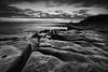 Patella Patterns... (-- Q --) Tags: stmaryslighthouse stmarysisland oldhartley whitleybay sea seascape rocks patterns atmosphere northtyneside northumberland northeastengland clouds scenicsnotjustlandscapes qthompson lee09softgrad lee06softgrad marumidhgcpl monochrome blackwhitephotos