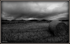 """ And the Thunder Rolls "" ("" P@tH Im@ges "") Tags: thunderrolls storm monochrome garthbrooks dublin ireland wicklowmountains stubble straw love outofcontrol lightening sleepless heart home clouds picasa3"