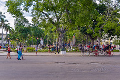 The Streets of Old Habana (Six Seraphim Photographic Division) Tags: miguelsegura cuba havana habana nikon d750 travel caribbean island historical cuban libra libre